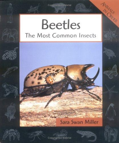 Download Beetles